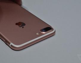 Giá bán iPhone 7 xách tay đang hạ nhiệt, giảm nhanh từ 2-3 triệu đồng