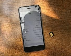 iPhone 6 khóa mạng Nhật đổ về Việt Nam với giá 4,9 triệu đồng
