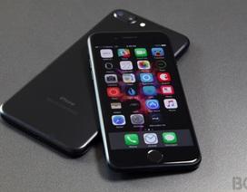 iPhone 8 vào năm tới sẽ có bản giá rẻ