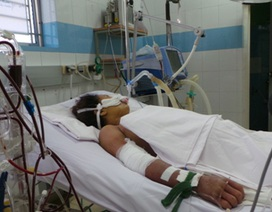 Cứu bệnh nhân sốc sốt xuất huyết biến chứng suy đa cơ quan