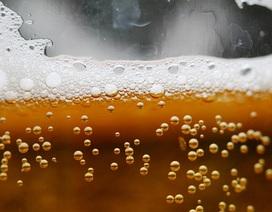 Phát hiện khảo cổ nghi bia đã được làm từ 5000 năm trước