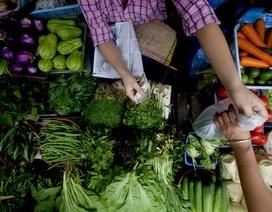 Giá thực phẩm leo thang kéo lạm phát trở lại