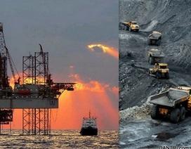 """Doanh nghiệp khoáng sản, xăng dầu vẫn """"nhất bảng"""" về doanh thu"""