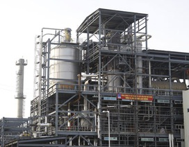 PVN sốt sắng với mối nguy phá sản nhà máy 325 triệu USD