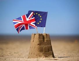 """Dân """"chơi"""" chứng khoán Việt Nam đặt cược may rủi Anh ở lại EU"""