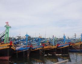 Có chuyện độc quyền trong bảo hiểm tàu cá cho ngư dân?