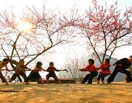 Kéo co Việt Nam chính thức trở thành Di sản của nhân loại