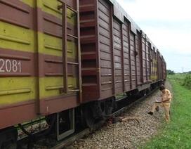 Người đàn ông bị tàu hỏa cán tử vong khi băng qua đường sắt
