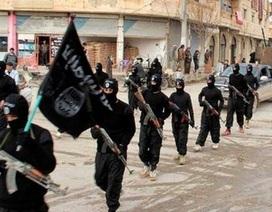 """Chương trình truyền hình thực tế mong """"phục thiện"""" phiến quân IS"""