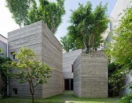 Nhà cây của Việt Nam lọt top 10 ngôi nhà của năm trên tạp chí Anh