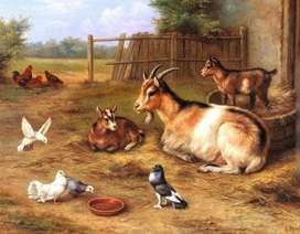 Hình ảnh loài Dê trong hội họa