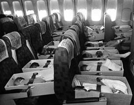 """Những bộ phim về chiến dịch """"không vận trẻ em"""" năm 1975"""