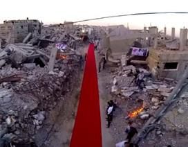 Ở nơi thảm đỏ liên hoan phim trải giữa vùng chiến sự
