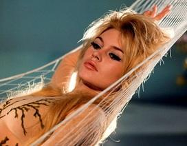 Ảnh hiếm về cuộc tình bí mật giữa Brigitte Bardot và một thợ săn ảnh