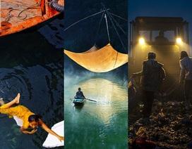 Nhiếp ảnh gia Việt Nam có nhiều ảnh xuất sắc tại giải ảnh quốc tế