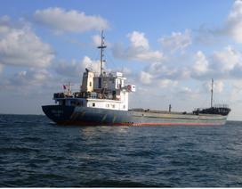 Bà Rịa - Vũng Tàu: Nguy cơ sụp đổ kế hoạch xử lý bụi lò thép