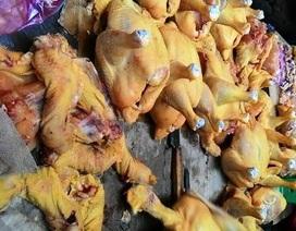 Vụ gà vàng nhờ độc chất: Đừng chạy theo hình thức đẹp!