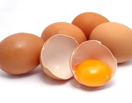 Cảnh báo nguy cơ sức khỏe từ sở thích ăn trứng lúc nhỏ