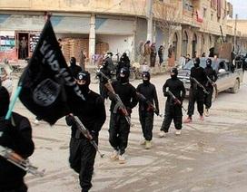 Rò rỉ tài liệu về cách thức IS xây dựng tổ chức