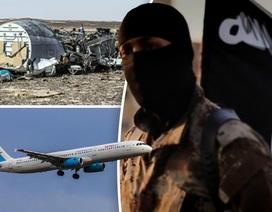 Lộ diện nghi phạm gài bom làm nổ tung máy bay Nga ở Ai Cập
