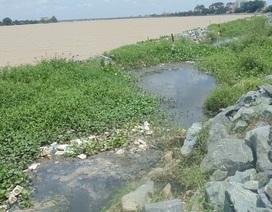 Sông Đồng Nai ô nhiễm bởi dự án lấn sông dang dở