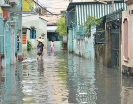 Sài Gòn có thể bị ngập trong dịp Tết Bính Thân