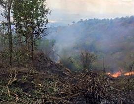 300 người vật lộn suốt 2 ngày dập lửa trên núi Chứa Chan