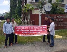 Long An: Hàng chục công nhân vây nhà máy đường đòi 1,9 tỉ tiền lương