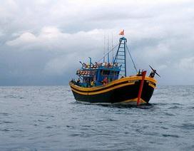 Phạt nặng 2 tàu giã cào ném thanh tra viên xuống biển