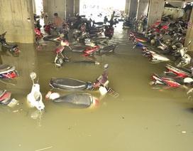 """Hàng nghìn xe """"ngâm"""" trong nước ngập: Ai bồi thường?"""