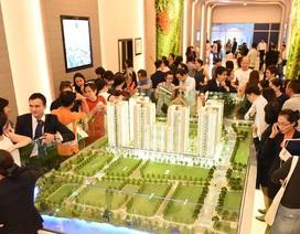 Bất chấp tin xấu, bất động sản Nam Sài Gòn vẫn sôi động