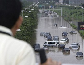 Hàn Quốc: 10 quả mìn thất lạc sau lở đất