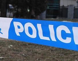 Bảo mẫu dùng dao tấn công các em nhỏ, 8 người bị thương