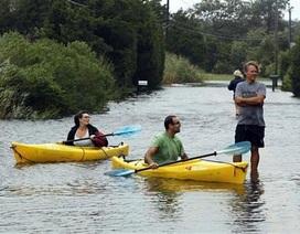 Gần 40 người Mỹ chết vì bão Irene