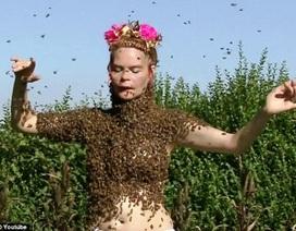 Cho 12.000 con ong bậu khắp cơ thể