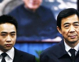 Con trai Bạc Hy Lai vào học tại trường luật danh tiếng nước Mỹ