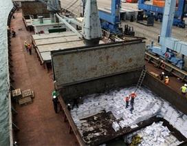 Tàu Triều Tiên chở vũ khí đối mặt khoản phạt 1 triệu USD