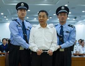 Bạc Hy Lai ra tòa vẫn đi giày hàng hiệu
