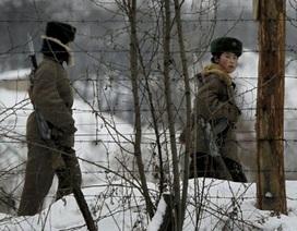 Triều Tiên xây các ụ súng bê tông giáp giới Trung Quốc