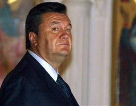 """Báo Nga: Ông Yanukovych chạy tới """"khu nghỉ dưỡng ở Mátxcơva"""""""