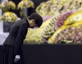 Tổng thống Hàn Quốc xin lỗi nhân dân về vụ chìm phà