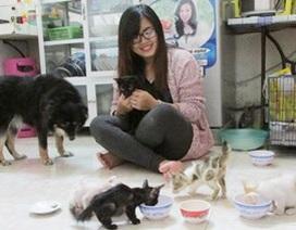 Đội cứu trợ động vật Đà Nẵng