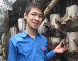 Bí thư chi Đoàn thu nhập 300 triệu/năm từ nấm