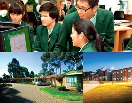 Hội thảo Du học trung học Úc với trường Westminster