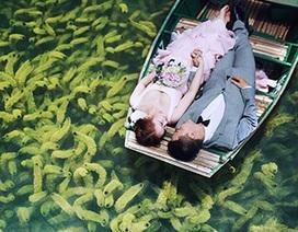 Thêm bộ ảnh cưới trên mặt nước đẹp như mơ