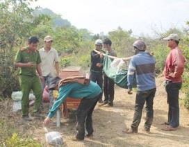 Phát hiện nam thanh niên chết bất thường trên đồi thông