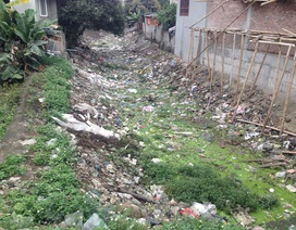 Kinh hãi kênh tưới tiêu biến thành kênh… rác