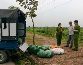 Bắt xe tải chở 600kg nội tạng, chân, cánh gà không rõ nguồn gốc