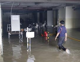 """TPHCM: """"Cứu"""" hơn 800 xe máy của sinh viên chìm trong tầng hầm ký túc xá"""