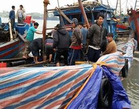 Cả trăm người hợp sức kéo tàu cá chìm dưới biển